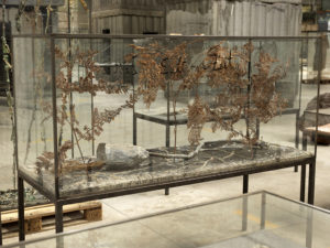 Saturn-Zeit, Anselm Kiefer photographe georges poncet