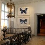 Musée de la Chasse et de la Nature, Paris - Miguel Branco Escalier aux papillons