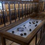 Musée de la Chasse et de la Nature, Paris - Miguel Branco Salle des trophées